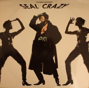 Seal - Crazy (The William Orbit Remix)