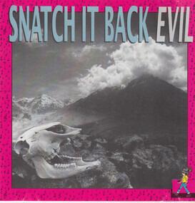 Snatch It Back - Evil