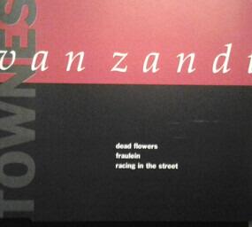 Townes Van Zandt - Dead Flowers
