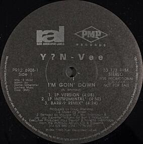 Y.N.V. - I'm Goin' Down