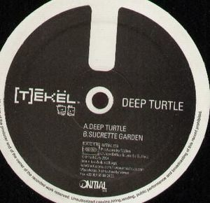 (T)ékel - Deep Turtle