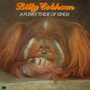 Billy Cobham - A Funky Thide of Sings
