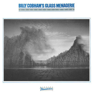 Billy Cobham - Observations &