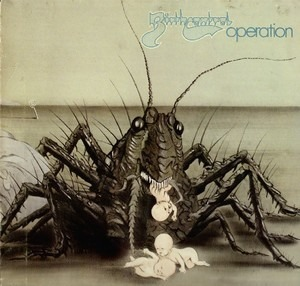 Birth Control - Operation