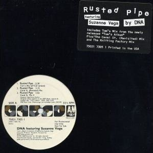 Suzanne Vega - Rusted Pipe