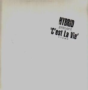Jean-Michel Jarre - C'est La Vie