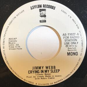 Jimmy Webb - Crying In My Sleep