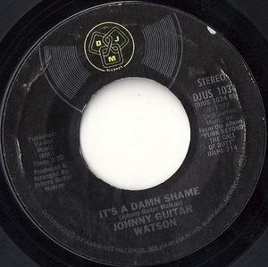 Johnny 'Guitar' Watson - It's A Damn Shame