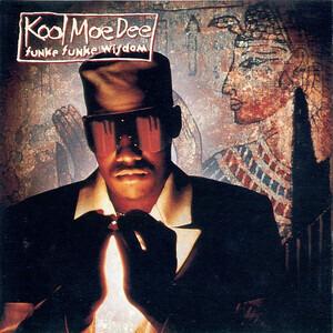 Kool Moe Dee - funke funke wisdom