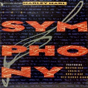 Marley Marl - The Symphony