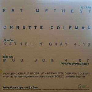 "Pat Metheny - ""Kathelin Gray""/""Mob Job"""
