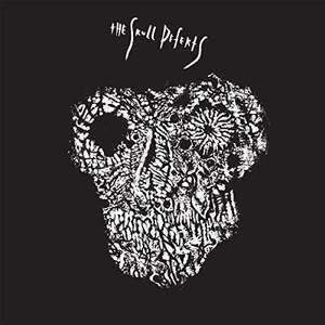 the skull defekts - Skull Defekts