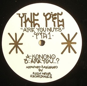 P.i.G. - Are You Nuts