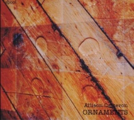 #<Artist:0x00007fb519098988> - Ornaments