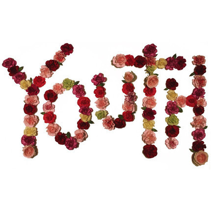 #<Artist:0x00000000053baa10> - Youth