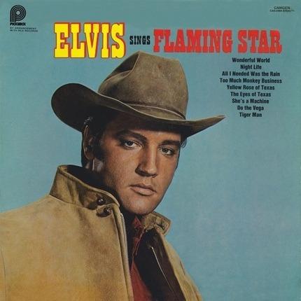 #<Artist:0x00007f78c1bd8418> - Elvis Sings 'Flaming Star'