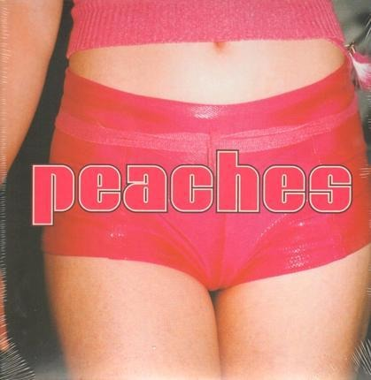 #<Artist:0x00007fe8eb6713e0> - The Teaches of Peaches