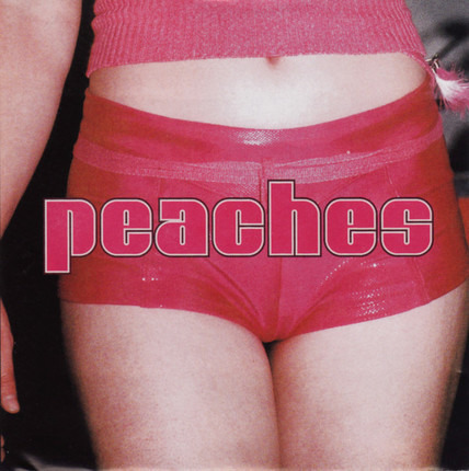 #<Artist:0x00007f5c17c52ea0> - The Teaches of Peaches