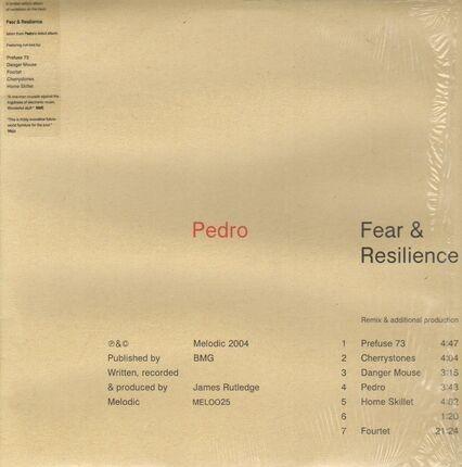 #<Artist:0x00007f8df09567a0> - Fear & Resilience