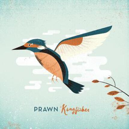 #<Artist:0x0000000006286440> - Kingfisher