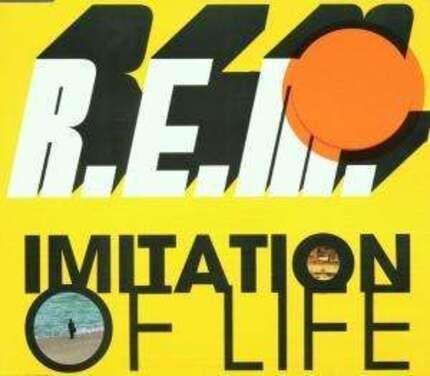 #<Artist:0x00000000066592c0> - Imitation of Life