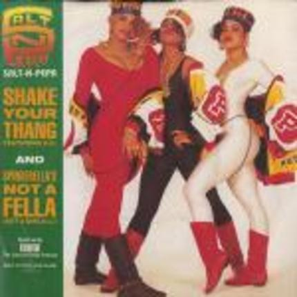 #<Artist:0x00007f4e57016308> - Shake Your Thang (It's Your Thing) / Spinderella's Not A Fella (But A Girl DJ)