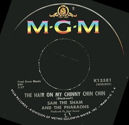#<Artist:0x00007fceb91709f0> - The Hair On My Chinny Chin Chin