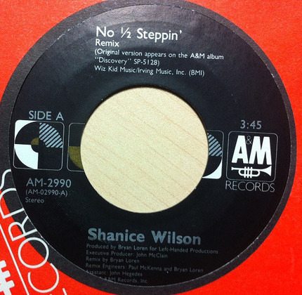 #<Artist:0x00007f6689303e68> - No 1/2 Steppin'