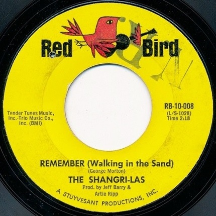 #<Artist:0x00007f410c99a878> - Remember (Walking In The Sand)