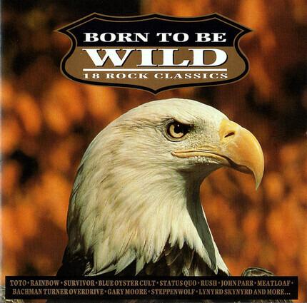 #<Artist:0x00007f06760b9220> - Born to Be Wild-Vol.1