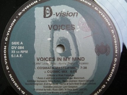 #<Artist:0x00007f410ccec4e0> - Voices In My Mind