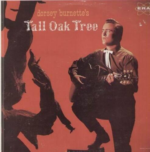 Dorsey burnette tall oak tree(better)