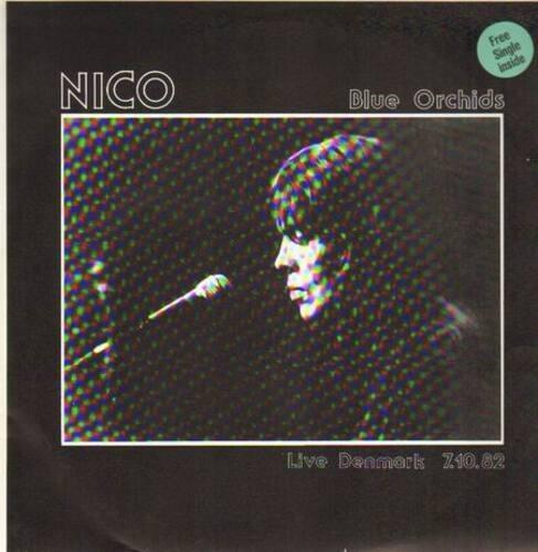 Nico blue orchids. live denmark 7.10.82
