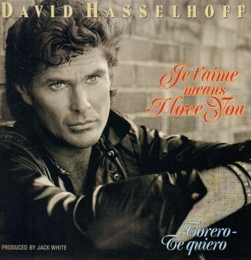 David hasselhoff lovin feelings