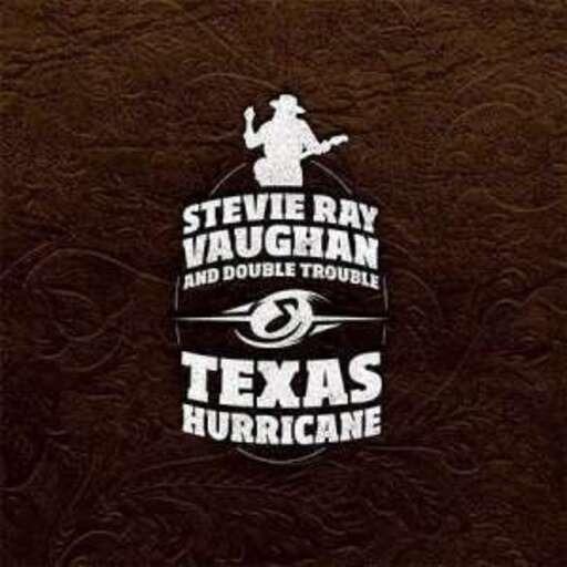 Stevie Ray Vaughan Alben Vinyl Schallplatten Recordsale
