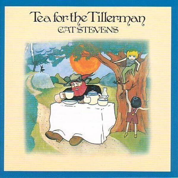 #<Artist:0x0000000005cf3f00> - Tea for the Tillerman