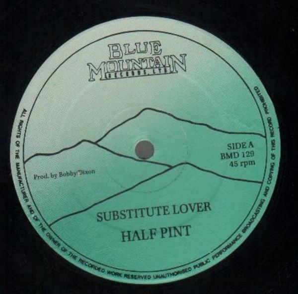 HALF PINT - Substitute Lover - 12 inch x 1