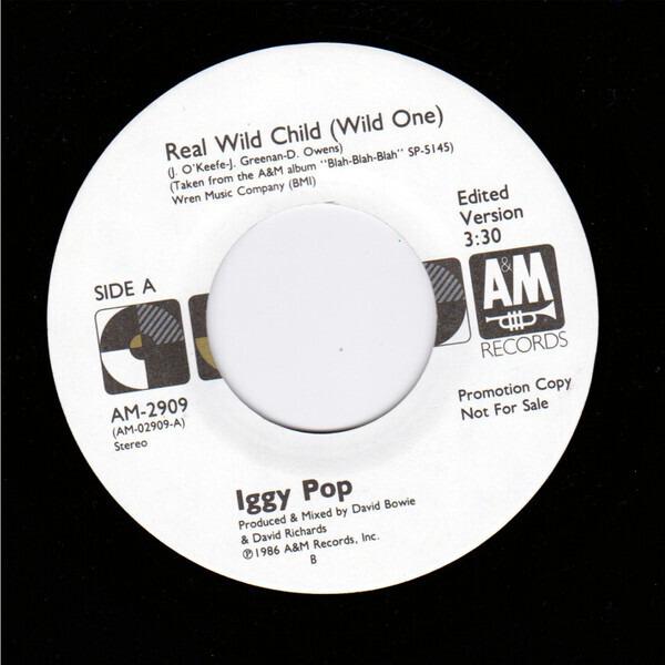 #<Artist:0x007f1f3aa8ae20> - Real Wild Child (Wild One)