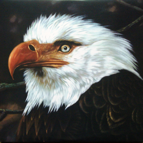 #<Artist:0x00007fcea76e2c60> - The Hawk Is Howling