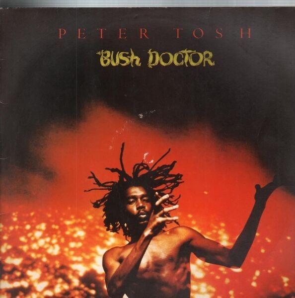 #<Artist:0x007f19220bc060> - Bush Doctor
