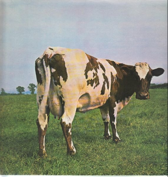 #<Artist:0x0000000724bec0> - Atom Heart Mother