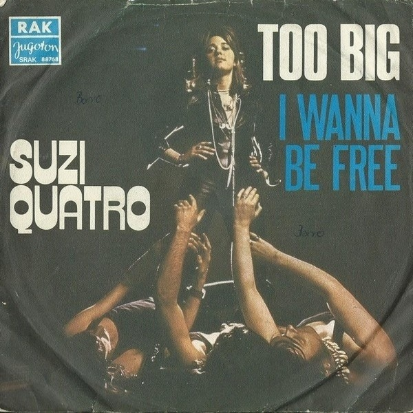 #<Artist:0x007f10a7e85a80> - Too Big / I Wanna Be Free