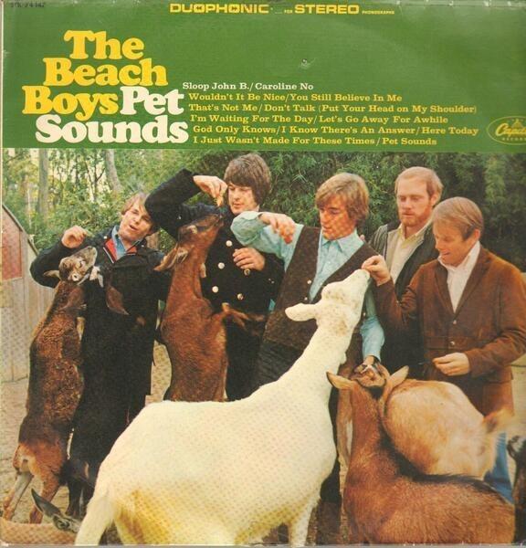 #<Artist:0x000000000878f688> - Pet Sounds