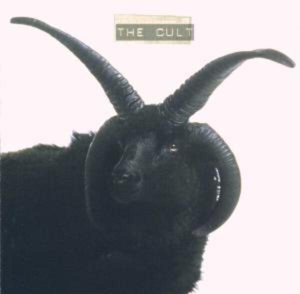 #<Artist:0x00007f418cbecb78> - The Cult
