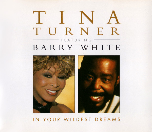 TINA TURNER FEATURING BARRY WHITE - In Your Wildest Dreams - CD single