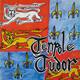 Tenpole Tudor